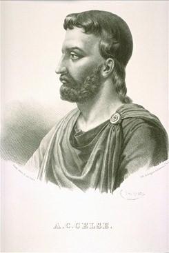 Rimski enciklopedista